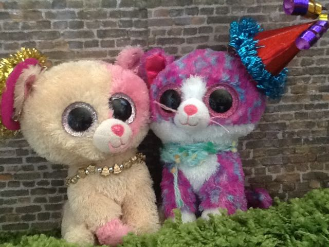 424264cfdb7 Beanie Boo Cat Anabelle. Anabelle and Gatsby. anabelleandcharlotte