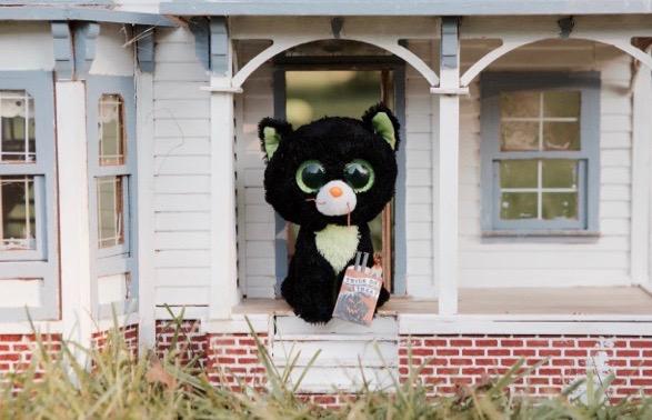 The Haunted Mansion: A Beanie Boo Halloween Adventure