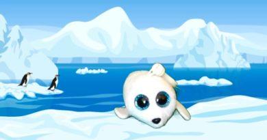 Icy the Seal Beanie Boo
