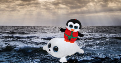 Beanie Boos Chill and Icy are lost at sea.
