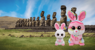 Beanie Boo Bunnies on Easter Island