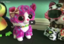 Beanie Boo's Got Talent: Episode One