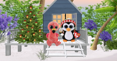 North Pole Dreams: Beanie Boo Video Series
